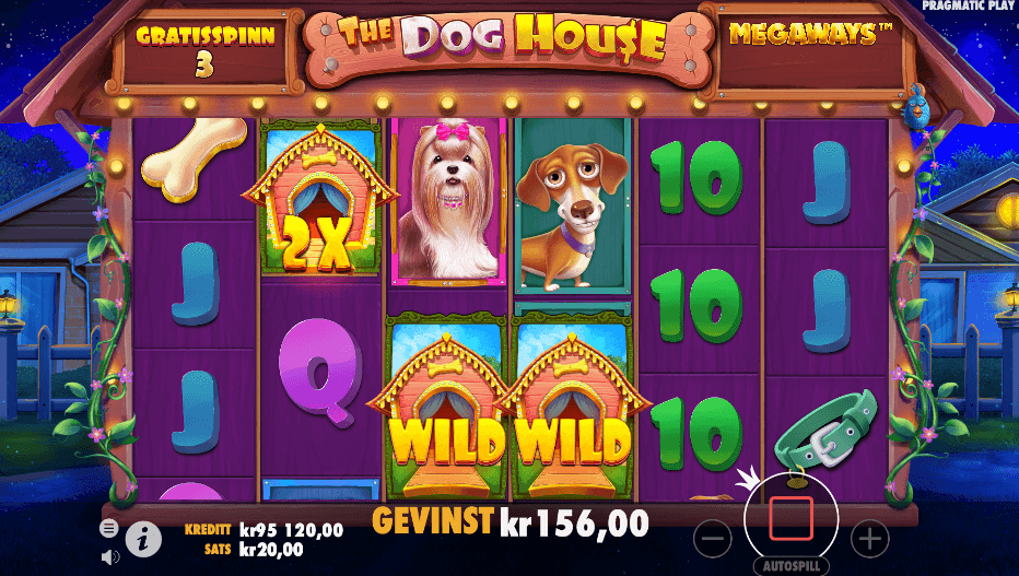 The Dog House Megaways™ free spins