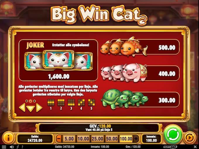 Big Win Cat symboler