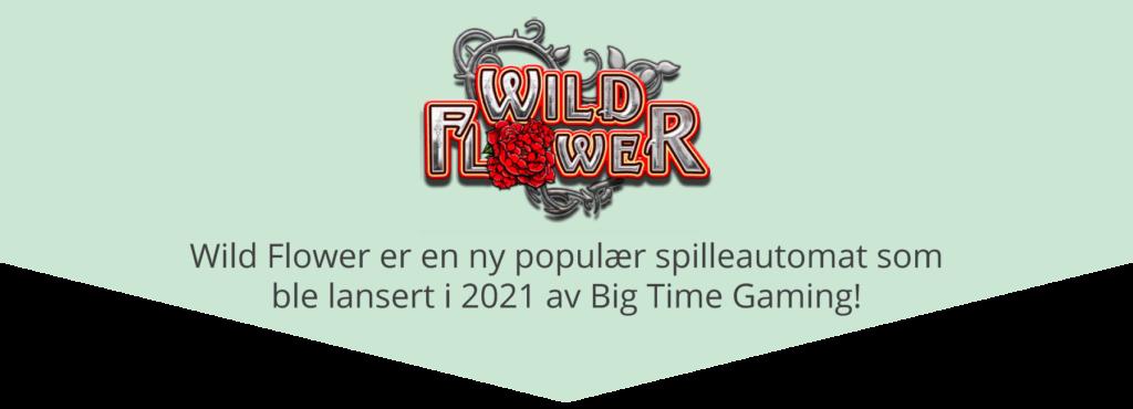 Ny spilleautomat - Wild Flower av Big Time Gaming